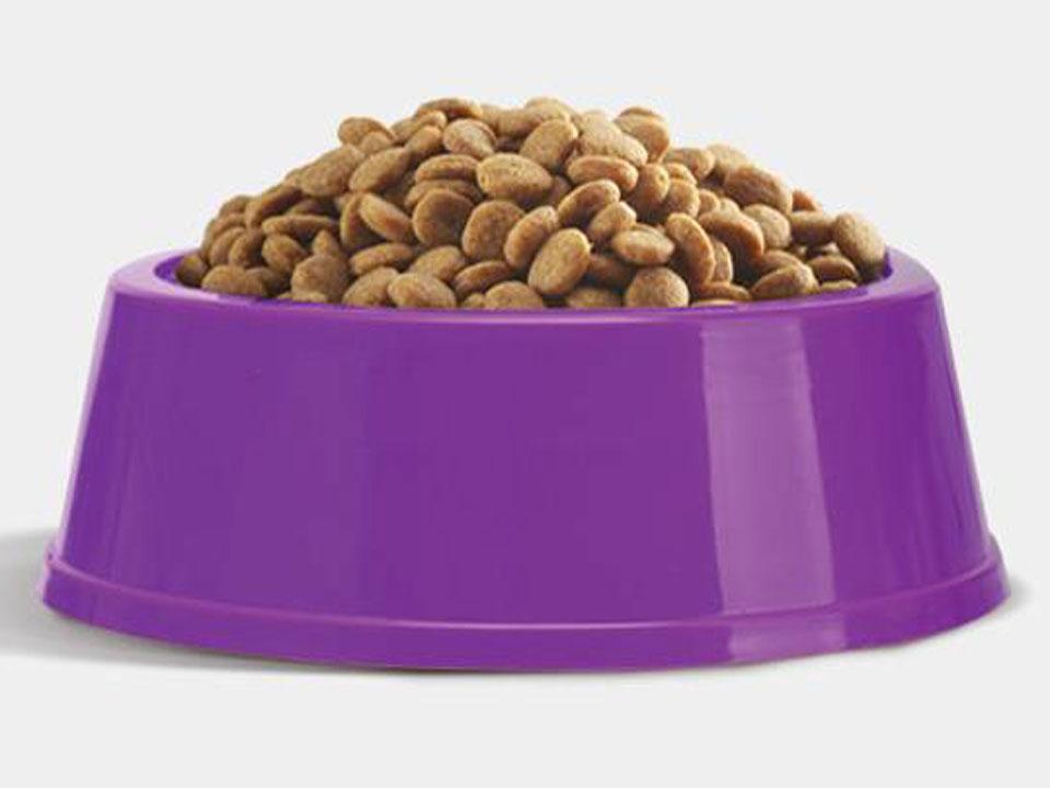 dieet voeding allergie jeuk dieren meppel