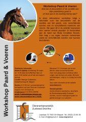 flyer workshop paard